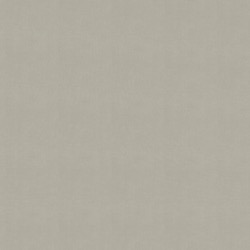 Rolgordijn - Lichtdoorlatend - Lichtgrijs - 120cm x 190cm